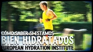 Cómo mantenerse hidratado: European Hydration Institute