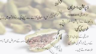 Choti Ilaichi Bary Faidy/Small Cardamom Big Benefit in urdu