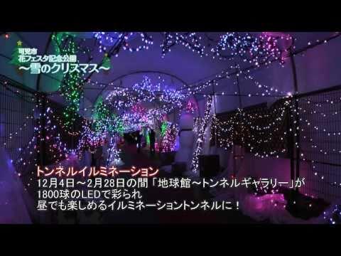 可児市 「花フェスタ記念公園」  ~雪のクリスマス~