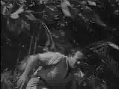 Voodoo Vore Video