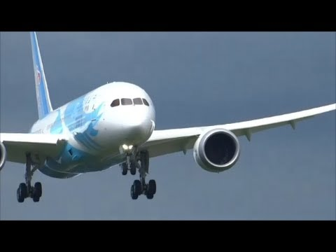787 Heavy Wind Wing Flexing China Southern