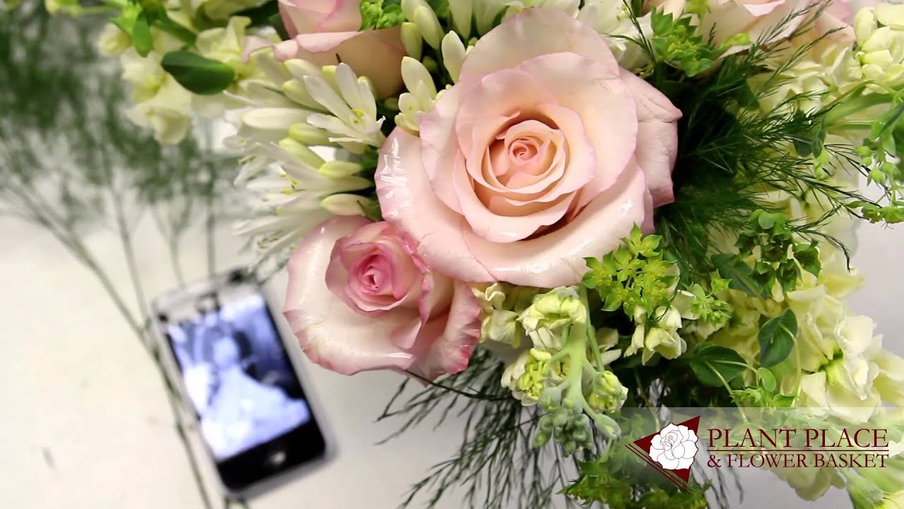 Amherst NY Florist Same Day Flower Delivery