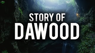 Video: Story of David