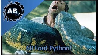 download lagu 60 Foot Python Snakebytestv : Animalbytestv gratis