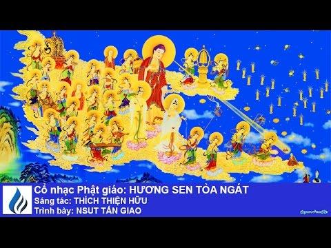 Cổ nhạc Phật giáo: HƯƠNG SEN TỎA NGÁT (karaoke)