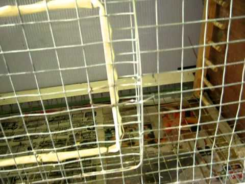 how to build a bird cage