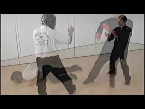 Samuel Kwok Wing Chun fighting applications DEMO Image 1