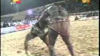 Modou Lo - Baye Mandione -Reactions