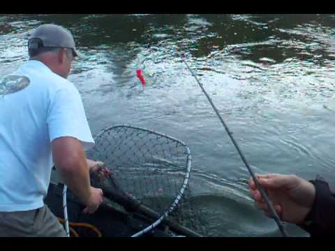 Temple City Sportsmen Salmon Fishing the Klamath River Northern California