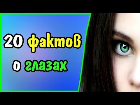 20 фактов о глазах
