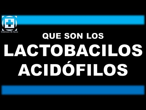 Que son los lactobacilos acid filos youtube for Que son los comedores escolares