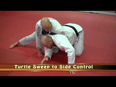 Turtle Sweep to Side Control Image 1