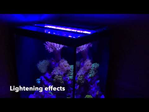 orbit marine led saltwater aquarium led light diy reviews