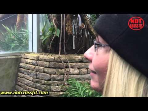 Franklin Park Conservatory Columbus Ohio 2016 Orchid Show