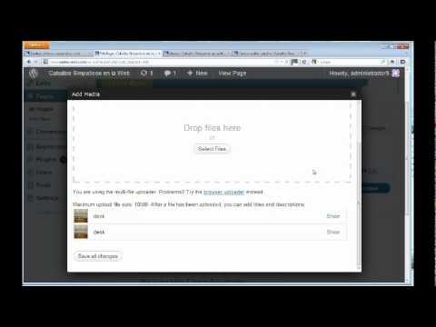 Cómo Comprar un Dominio, Hosting y Crear Websites con WordPress - Parte 10