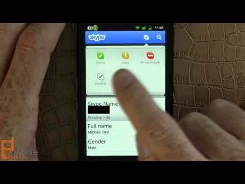 Skype 2.0 for Android video call demo