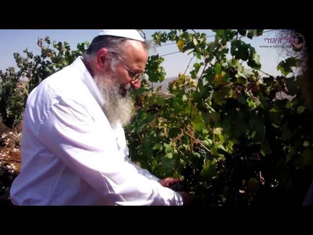 הרב שמואל אליהו בביקור חיזוק אצל בעז אלברט