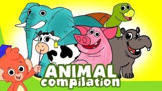 Learn Animals for Kids | Animal Cartoon Compilation for Children | Zoo Cartoon Cartoons