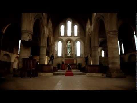 The March Violets - Dandelion King