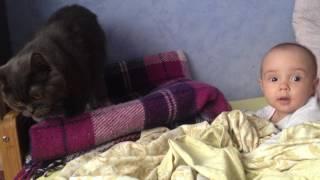 Дети и коты Как Миланка кота напугала Baby and Cat Смешные дети Приколы с детьми