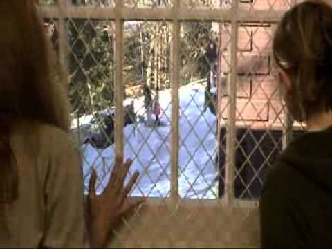 [classic Scenes] Girl Interrupted- We're Going To Be Trees video