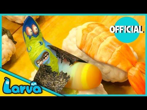 LARVA - SUSHI   2016 Full Movie Cartoon   Cartoons For Children   LARVA Official