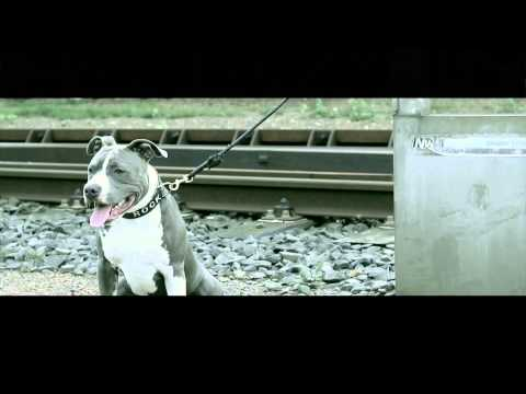 Shabba - Zero Naar 'n Barkie (promo Video) video