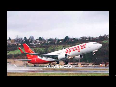 Indian airline SpiceJet hits buffalo during take off