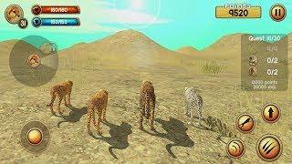 Wild Cheetah Sim 3D Android Gameplay #5