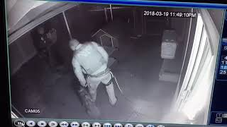 Police Discover Criminal Hiding in Dog House - 986426-2