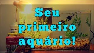 Como montar seu primeiro aquário (água doce)