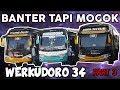 TRIP REPORT!!! BANTER TAPI MOGOK, PO. HARYANTO 34 PART 3!!! thumbnail