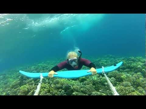 Dive Wing Extreme Snorkeling