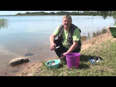 рыбалка на озере репъявр