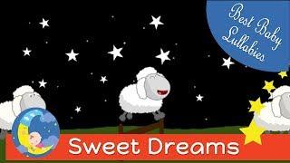 Baa Baa Black Sheep Lullabies Lullaby For Babies Go To Sleep Baby Song Sleep Music-Baby Sleep Songs