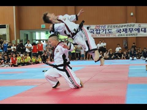 Hapkido Austria (합기도 오스트리아) - International Championship Seoul 2016