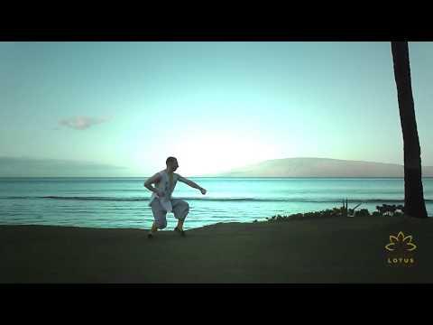 Tong Bei Quan - Shaolin Lotus - Shaolin Kung Fu and Chen Tai Chi, Orpington