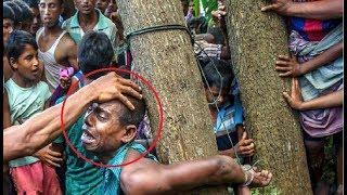 দেখুন নির্মমতার কাছে হেরে গেলেন এক রোহিঙ্গার জীবন [Don`t Miss it]