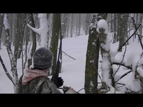 Lov divočáka na sněhu