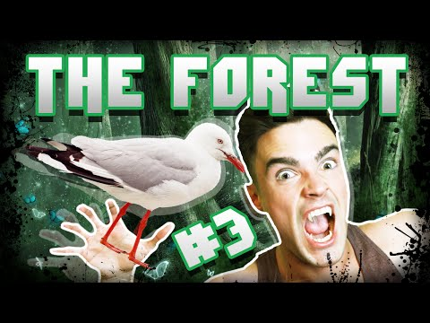 ZABÓJCZA MEWA! - THE FOREST [#3]