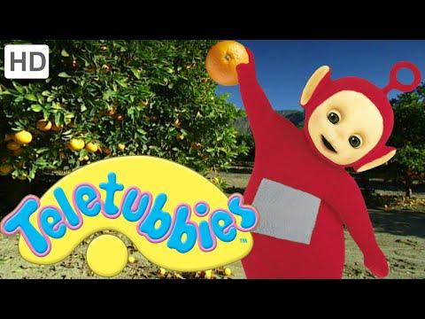 Teletubbies: Orange Picking - Hd Video video