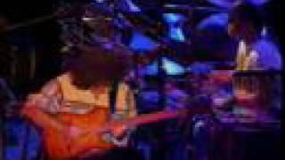 Pat Metheny - Above the Treetops