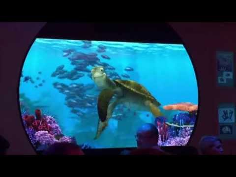 Talking with Finding Nemo's Crush on the Disney Fantasy cruise ship