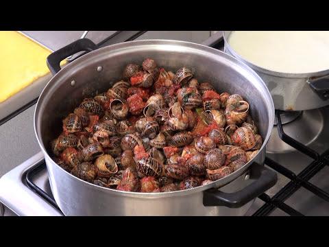 Caracoles guisados Vídeo receta 17 aqui cocinamos todos Cooking recipe