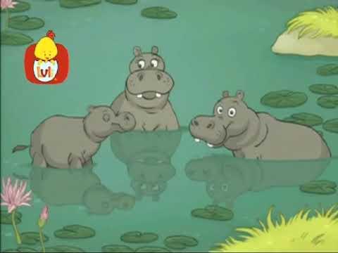 La vaca hace mu - El hipopótamo, para niños