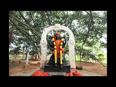 Karpura Gauram Karuna Avataram Paramahamsa Sri Nithyananda