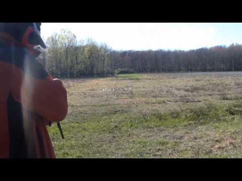 Old .22lr: Model 72 Savage arms falling block rifle