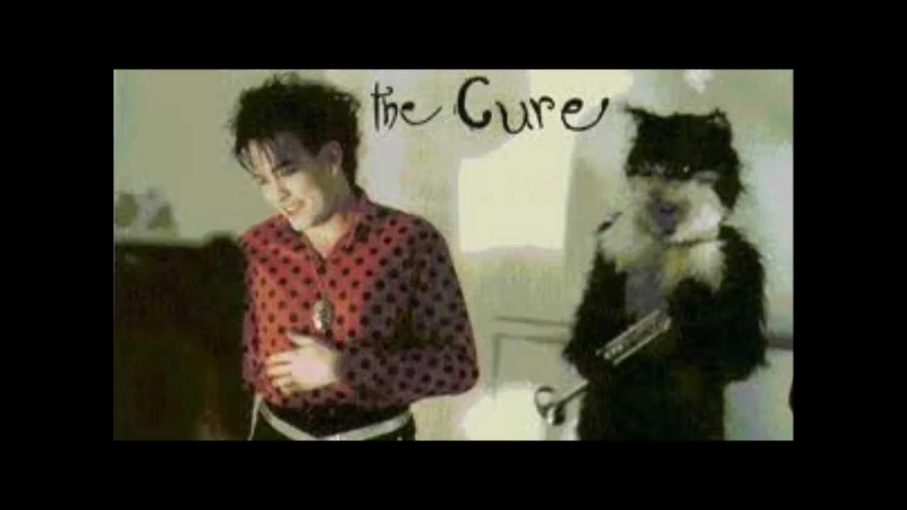 The Cure Love Cats Lyrics Youtube