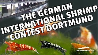 The German International Shrimp Contest Dortmund 2017