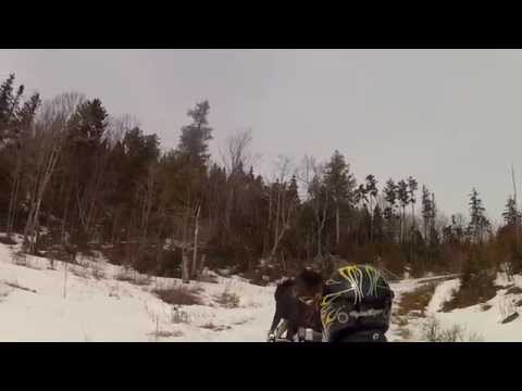 Snowmobiler moose attack in Jackman Maine